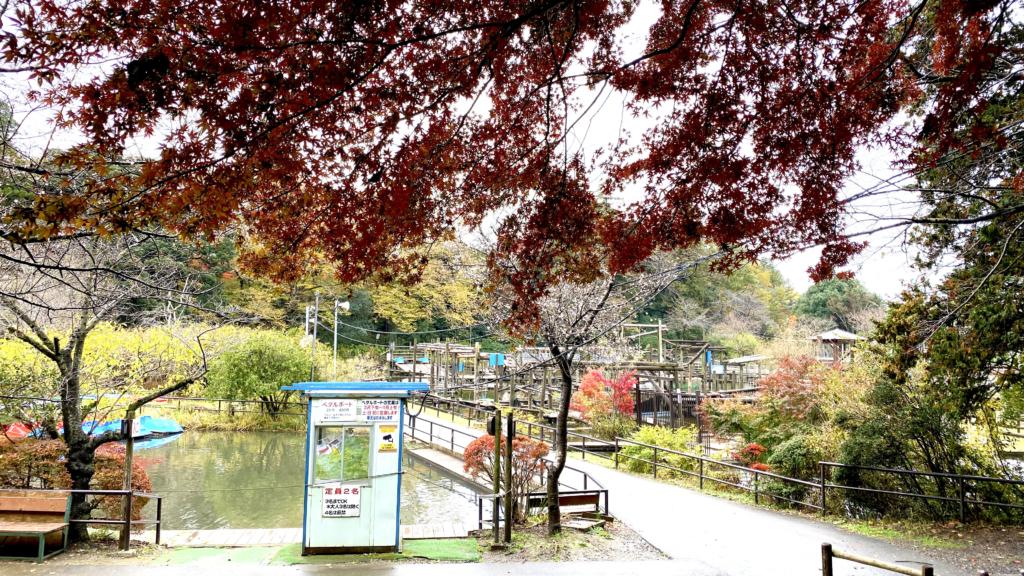 清水公園の紅葉3