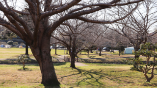野田市スポーツ公園